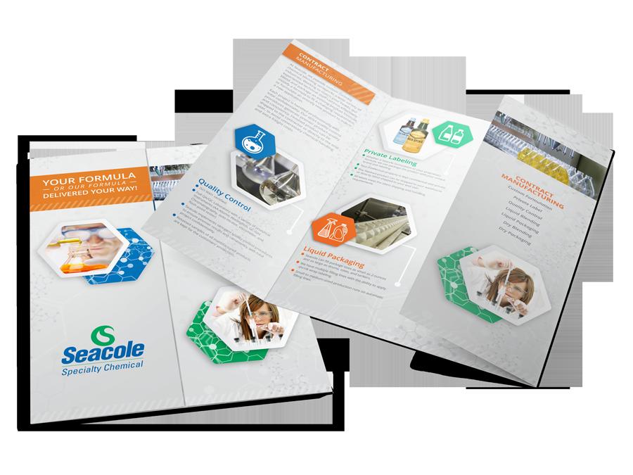 Seacole Gate Fold Brochure Mockup 2